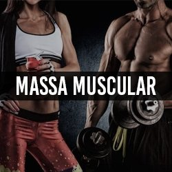 Massa Muscular